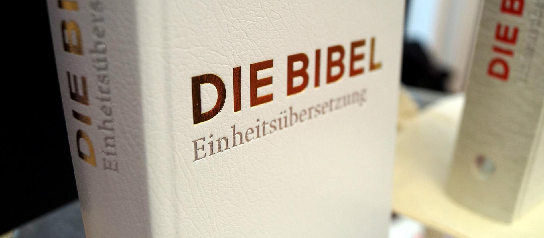 Wie ich die Bibel richtig lese - katholisch.de