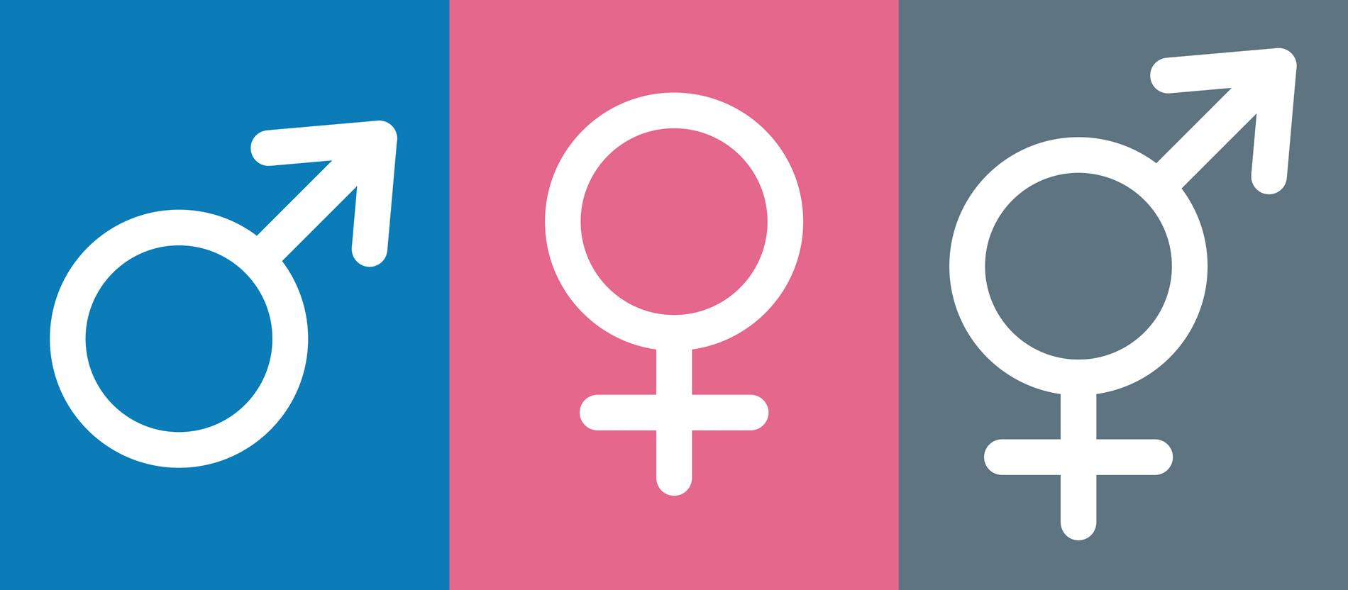Geschlecht Weiblich